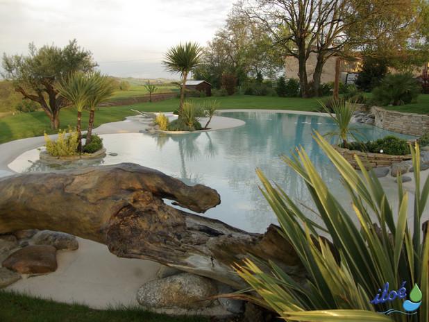iloé - piscines - paysage 12