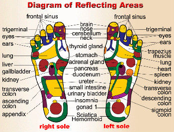 Diagram of reflecting areas