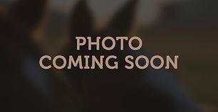 photo-coming-soon.jpg