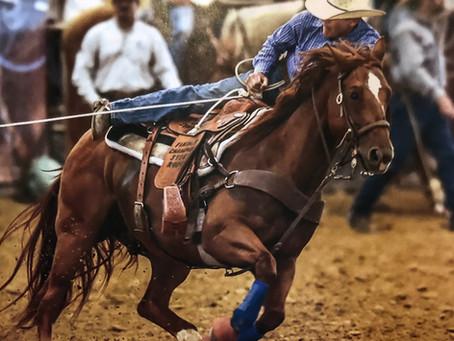 "Congrats to ""Professor"" Lena Joe Ichi & Martin Poindexter, PRCA Horse of the Year - Steer Roping"