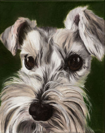 Schnauzer - Oil on Canvas (SOLD)