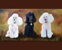 Poodle Trio (SOLD)