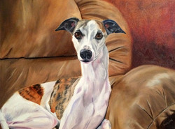 Nearly the Whippet (SOLD)