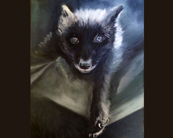 Scamp The Fox (SOLD)