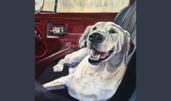 Happiness in a Beetle (SOLD)