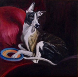 Bandi the Whippet (SOLD)