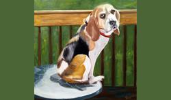 Rosie Beagle (SOLD)