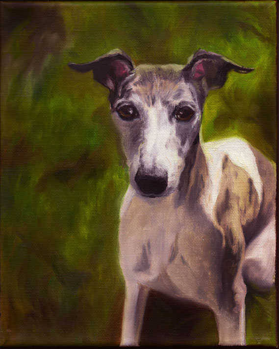 Vegas the Whippet (SOLD)