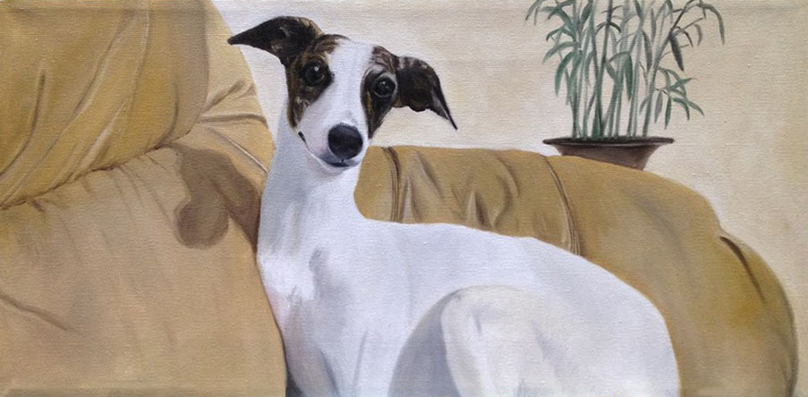 Finnegan the Whippet (SOLD