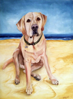 Boone at the Beach (SOLD)