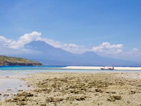 Pourquoi vous ne pouvez pas ne pas aller à Menjangan, Bali!
