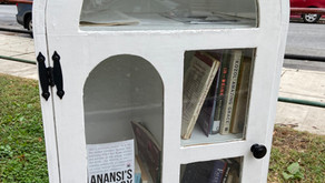 Copy of Little Free Library in Malcolm X Park, 51st Street & Larchwood Avenue