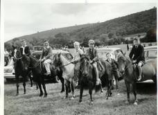 Purslow Sports - 1960 horses
