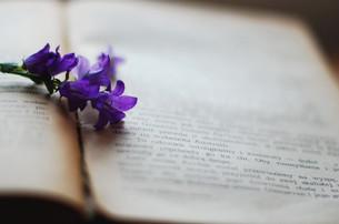 В Центре культурных инициатив прошли первые «Поэтические посиделки»