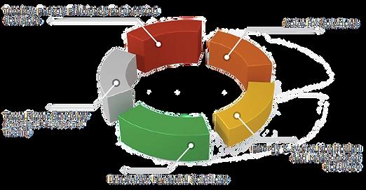 Terra Firma Solutions (transparent).png