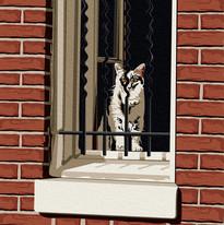 kitty cat-01.jpg