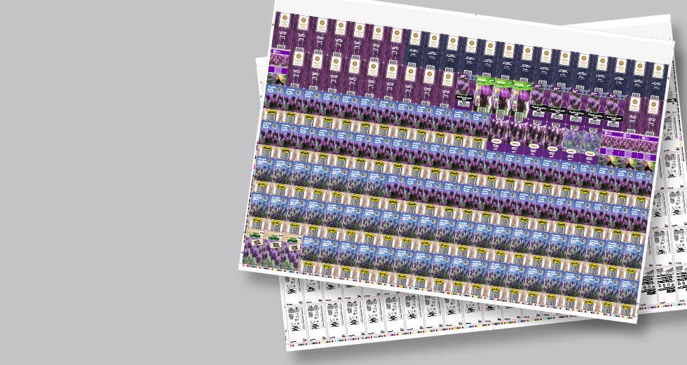 Nieuws_980x523_hybrid.jpg