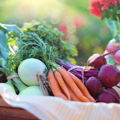beets-carrots-close-up-533360.jpg