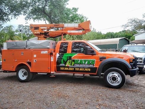 Hayes Tree Service bucket truck with logo parked in New Port Richey FL