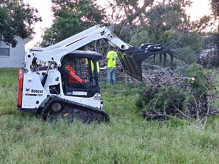Hayes Tree Service using their bobcat track loader to clear brush from a property in New Port Richey FL