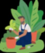 Gardening_illustration.png