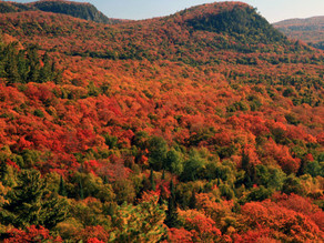 Best Fall Hikes in Ontario