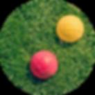 lawn-bowling.png