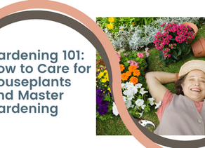 Gardening 101: How to Care for Houseplants and Master Gardening