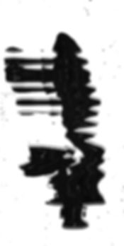 140119_scanpilz_4_300dpi_Raster-struktur