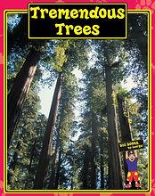 TremTrees.jpg