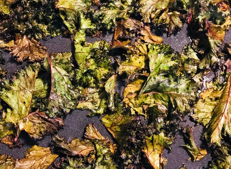 Kale Chips: A Superfood Snack