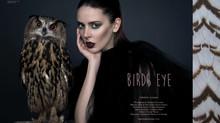 Editorial | Birds Eye