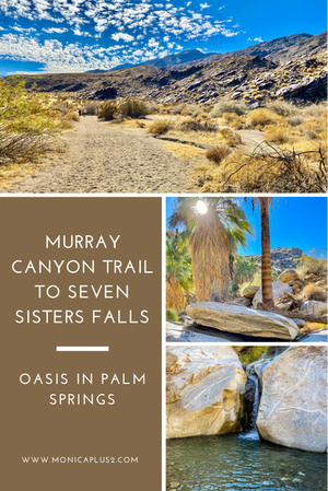 Murray Canyon Trail To Seven Sisters Falls. Oasis In Palm Springs