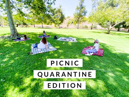 Picnic Quarantine Edition