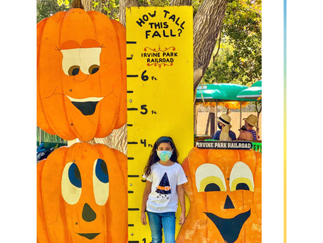Irvine Park Railroad: Modified Pumpkin Patch To Keep The Fall Tradition Alive