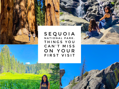Sequoia National Park. Things You Can't Miss On Your First Visit