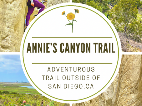 Adventurous Trail Outside Of San Diego. Annie's Canyon Trail