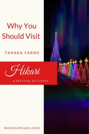 Tanaka Farms HIKARI- A Festival Of Lights
