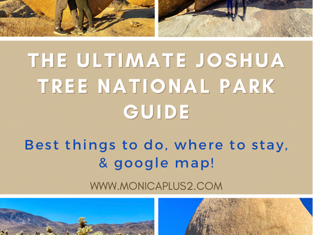 The Ultimate Joshua Tree National Park Guide. The Best Things To Do, Where To Stay & Google Map!