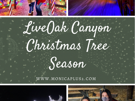 Live Oak Canyon Christmas Tree Season