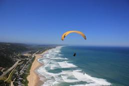dolphin-paragliding.jpg