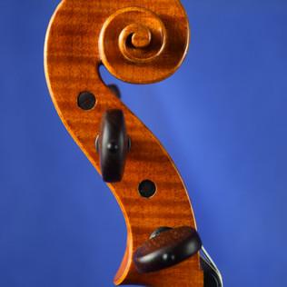 Violino 2018
