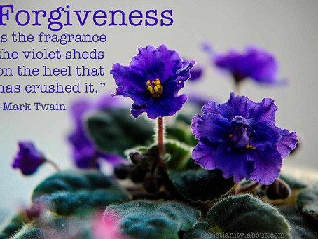 Forgive yourself as you do others