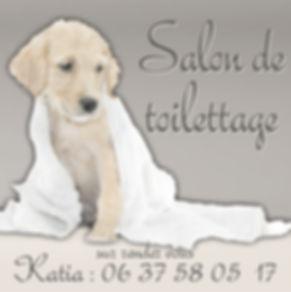 Salon_toilettage.jpg