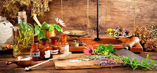 terapia-con-plantas-medicinales.jpg