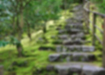 18737338-asian-garden-stone-staircase-wi