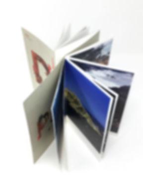 Pam Longobardi Artist Catalog Graphc Design GDLOFT