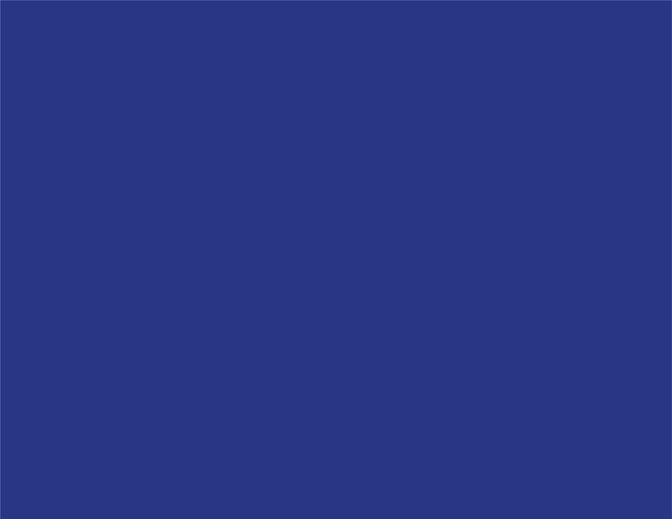 PPDL_Colors-04.jpg