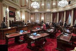 CA Senate.jpeg