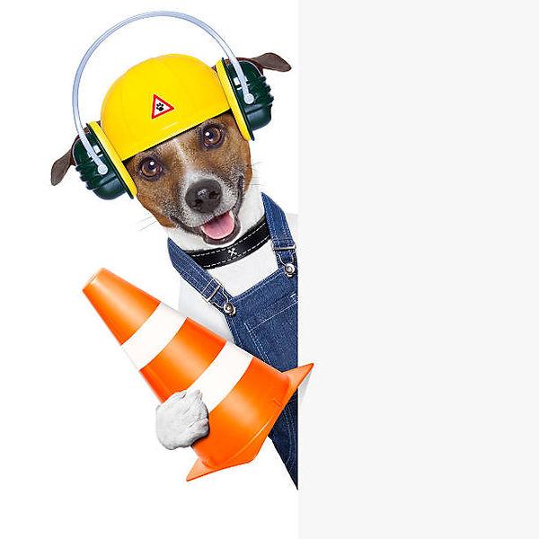 Construction Dog - Copy.jpg